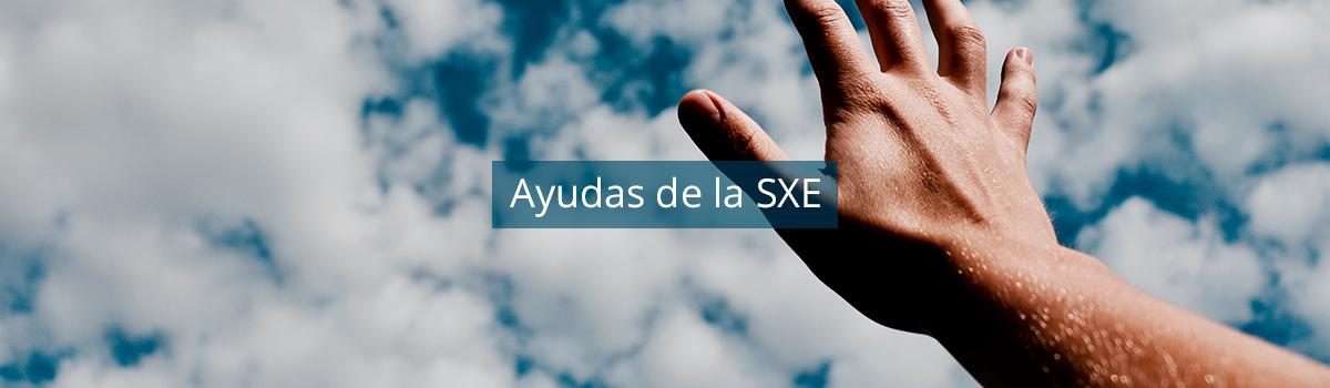 Consulta aquí la información de los programas de ayudas convocados por la SXE