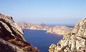 Las mayores colonias de Europa de gaviota patiamarilla y cormorán
