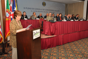 IX Pleno del Consello de Comunidades Galegas