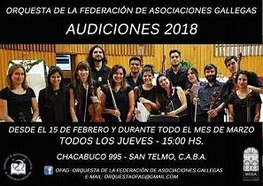 Audiciones 2018 para la Orquesta de Cámara de la Federación de Asociaciónes Gallegas de la República Argentina