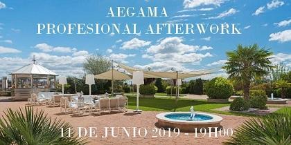 Aegama Profesional Afterwork, en Madrid