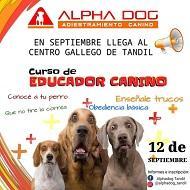 Curso de educador canino, en Tandil