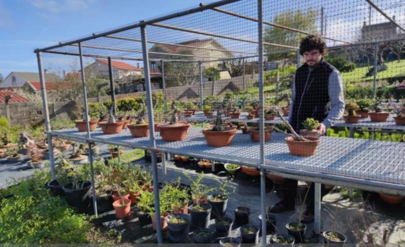 Foto de arquivo dun dos negocios -un viveiro de plantas- postos en marcha co apoio das Axudas ao retorno emprendedor da SXE